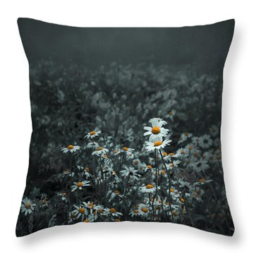 Daisies-daisies Throw Pillow by Svetlana Sewell