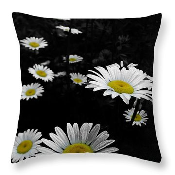 Daisies Throw Pillow by GJ Blackman