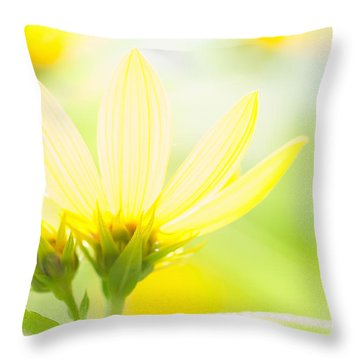 Daisies In The Sun Throw Pillow