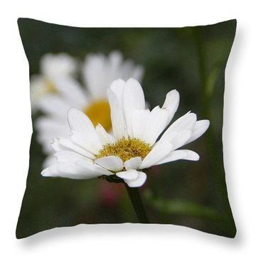 Smiling Daisies Throw Pillow by Yvonne Wright