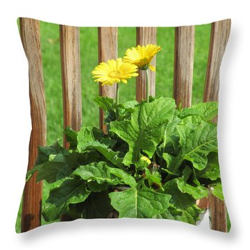 Throw Pillow featuring the photograph Daisy And Raindrops by Tina M Wenger