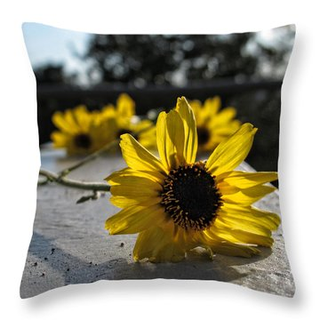 Daisy Daisy Give Me Your Answer Throw Pillow