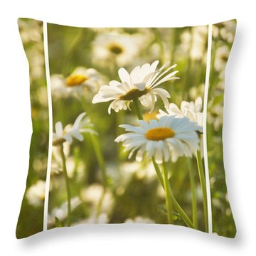 Daisy Dreams Throw Pillow