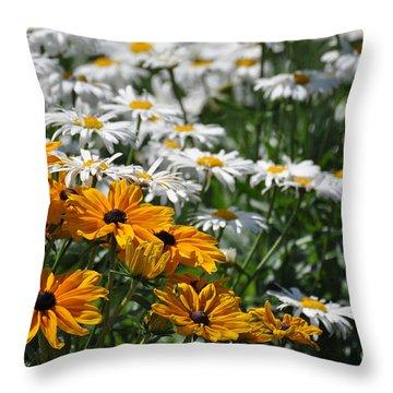 Throw Pillow featuring the photograph Daisy Fields by Bianca Nadeau