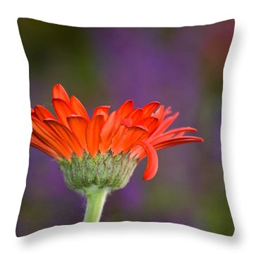 Daisy For Monet Throw Pillow