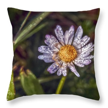 Throw Pillow featuring the photograph Daisy by Hanny Heim