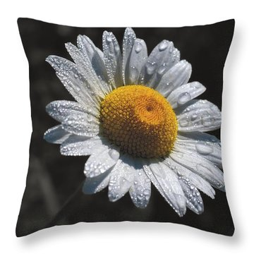 Daisy Morning Dew Throw Pillow by Henry Kowalski