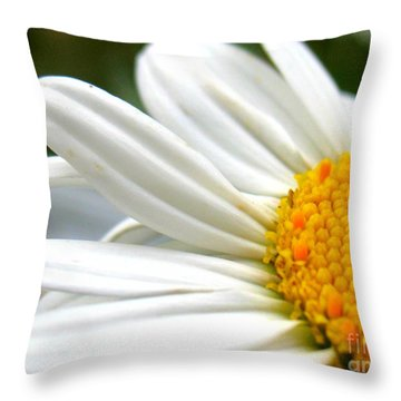 Daisy Throw Pillow by Patti Whitten