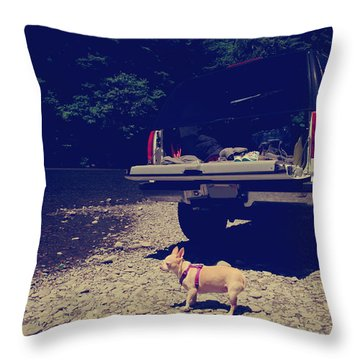 Daisy's Adventure Throw Pillow by Laurie Search