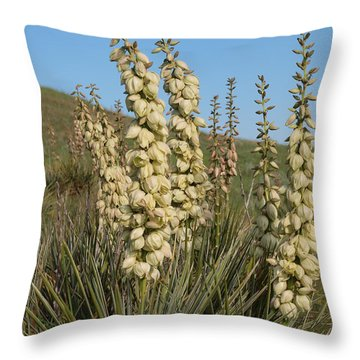 Dakota Prairie Throw Pillow