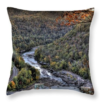 Throw Pillow featuring the photograph Dam In The Forest by Jonny D