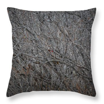 Damaged Wings Throw Pillow