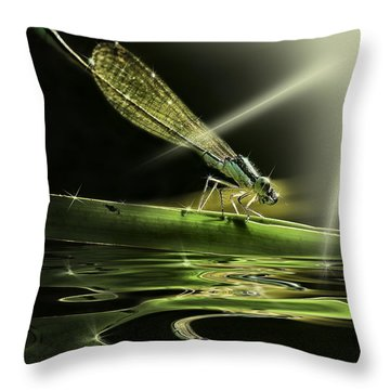 Damsel Dragon Fly  With Sparkling Reflection Throw Pillow