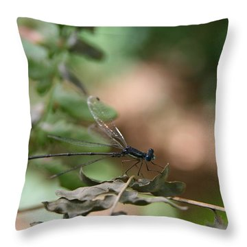 Damselfly Throw Pillow by Neal Eslinger