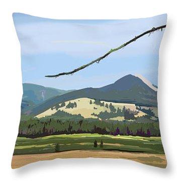 Danaher View Panorama Throw Pillow