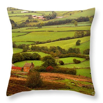 Danby Dale Yorkshire Moors Throw Pillow