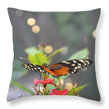 Dance Of The Butterfly Throw Pillow by Carla Carson