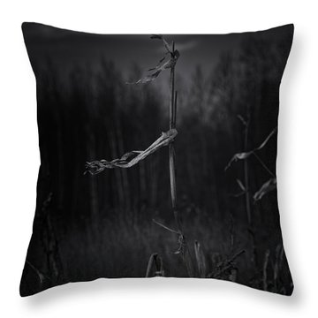 Dance Of The Corn Throw Pillow by Susan Capuano