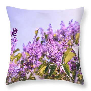 Dance Of The Lilacs Throw Pillow by Colleen Kammerer