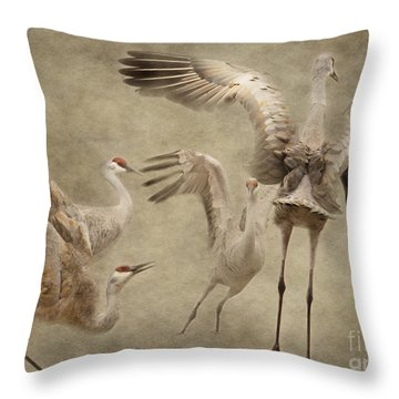 Dance Of The Sandhill Crane Throw Pillow
