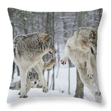 Throw Pillow featuring the photograph Dances With Wolves by Wolves Only