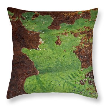 Throw Pillow featuring the photograph Dancing Dino Dinosaur Abstract Square by Lee Craig