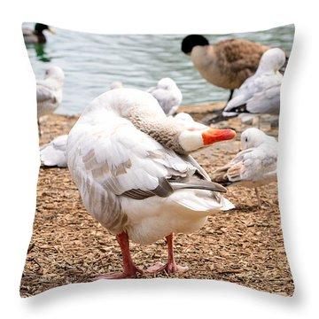 Dancing Goose 2 Throw Pillow by Bob Gross