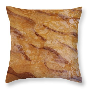 Dancing Reflections Over Ripples Throw Pillow by Kathi Mirto