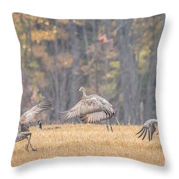 Dancing Sandhill Cranes Throw Pillow