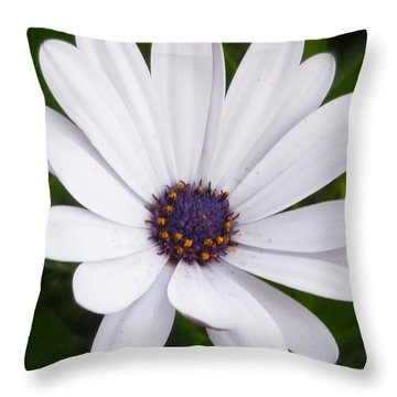 Dancing With The Morning Stars Throw Pillow by Lingfai Leung