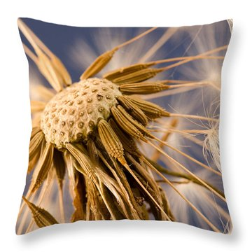 Dandelightful Throw Pillow by Don Schwartz