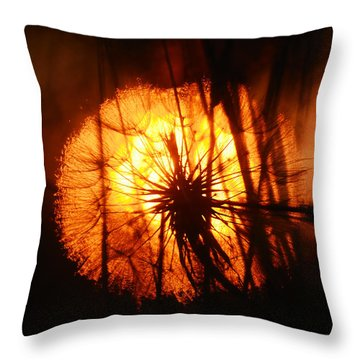 Dandelion At Sunset Throw Pillow