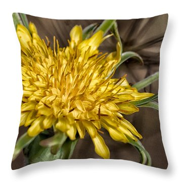 Dandelion Throw Pillow by Betty Depee