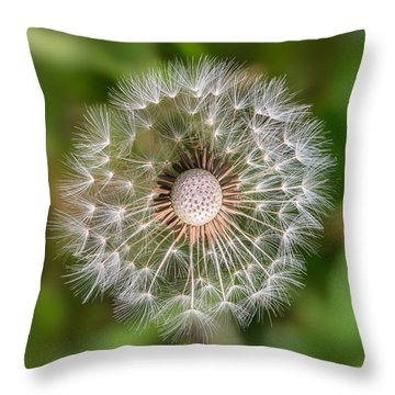 Dandelion Throw Pillow by Carsten Reisinger