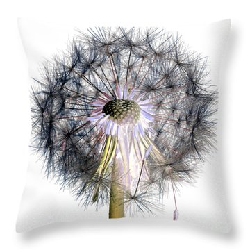 Dandelion Clock No.1 Throw Pillow