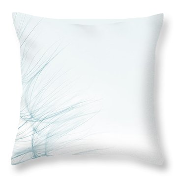 Dandelion Detail Against White Background Throw Pillow