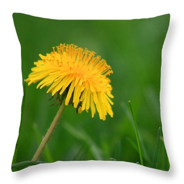 Dandelion Flower Throw Pillow