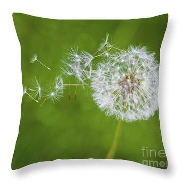 Dandelion In The Wind Throw Pillow