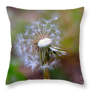 Throw Pillow featuring the photograph Dandelion by Lisa L Silva