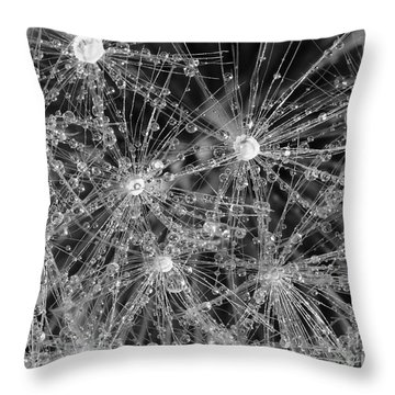 Dandelion Throw Pillow by Nicholas Burningham