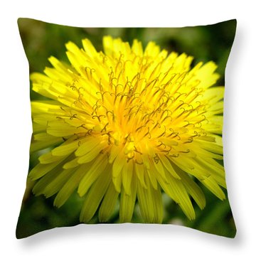 Throw Pillow featuring the digital art Dandelion by Ron Harpham