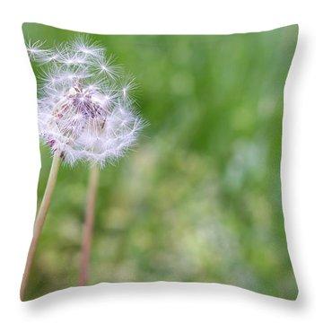Dandelion Seed Ball Throw Pillow by James Drake