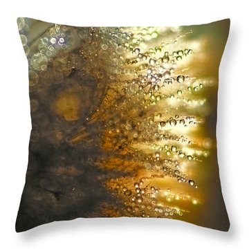 Dandelion Shine Throw Pillow by Peggy Collins
