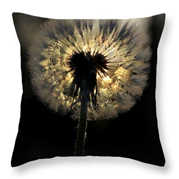 Dandelion Sunrise - 1 Throw Pillow by Kenny Glotfelty