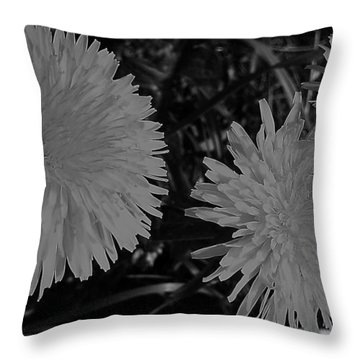 Throw Pillow featuring the photograph Dandelion Weeds? B/w by Martin Howard