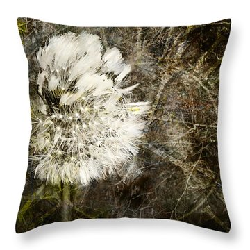 Throw Pillow featuring the photograph Dandelions Don't Care About The Time by Belinda Greb