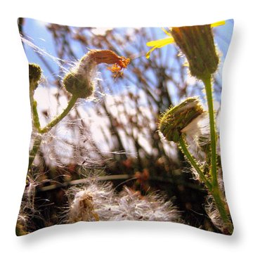 Throw Pillow featuring the photograph Dandy Day by Kathy Bassett