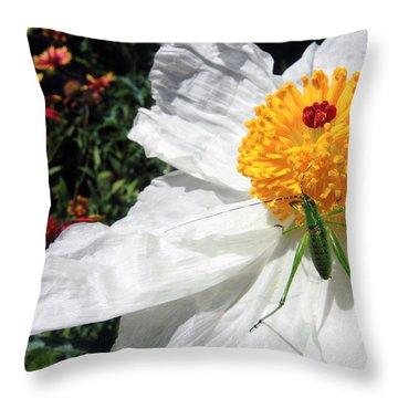 Dandy Throw Pillow by Skip Hunt