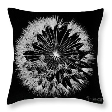 Throw Pillow featuring the digital art Dandylion White On Black by Clayton Bruster