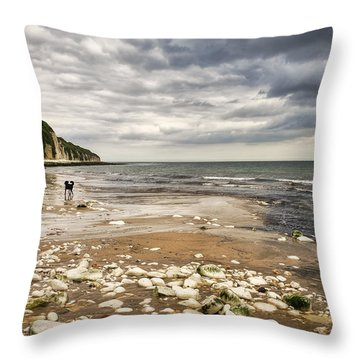 Danes Dyke Throw Pillow by Svetlana Sewell